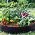 Pat de flori si legume cu bordura din metal