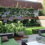 Terasa cu vegetatie abundenta