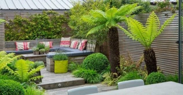 Terasa placata cu lemn si cu plante decorative