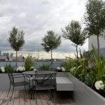 Terasa cu plante pe acoperis
