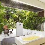 Baie cu curte cu plante exotice
