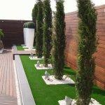 Ronduri cu gazon, pietris si arbusti decorativi