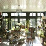 Living luminos cu plante decorative tavan cu lambriu